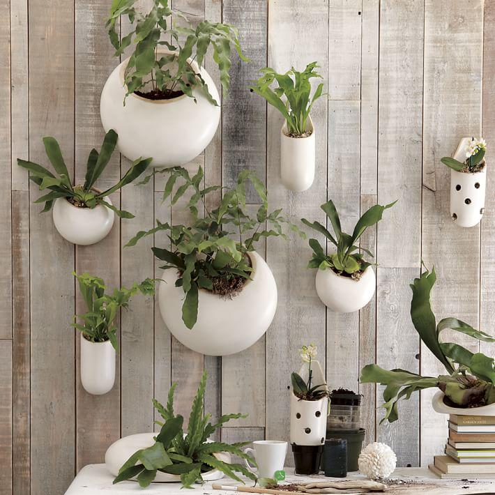 Shane Powers West Elm ceramic wall planters