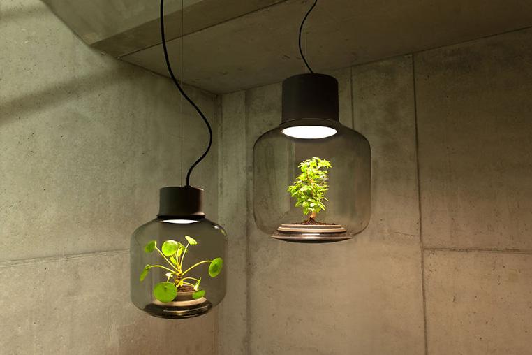 Nui-Studio-Mygdal-Plant-Lamp