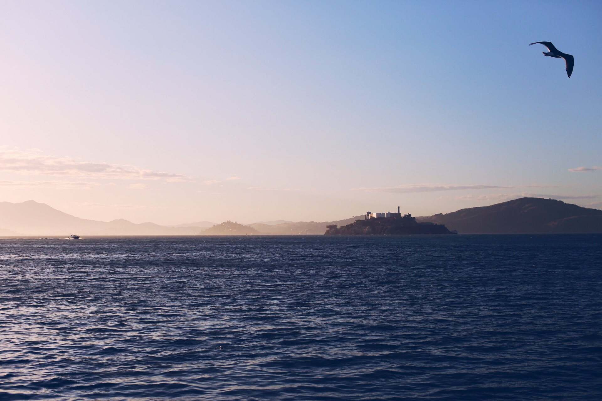 Alcatraz from pier