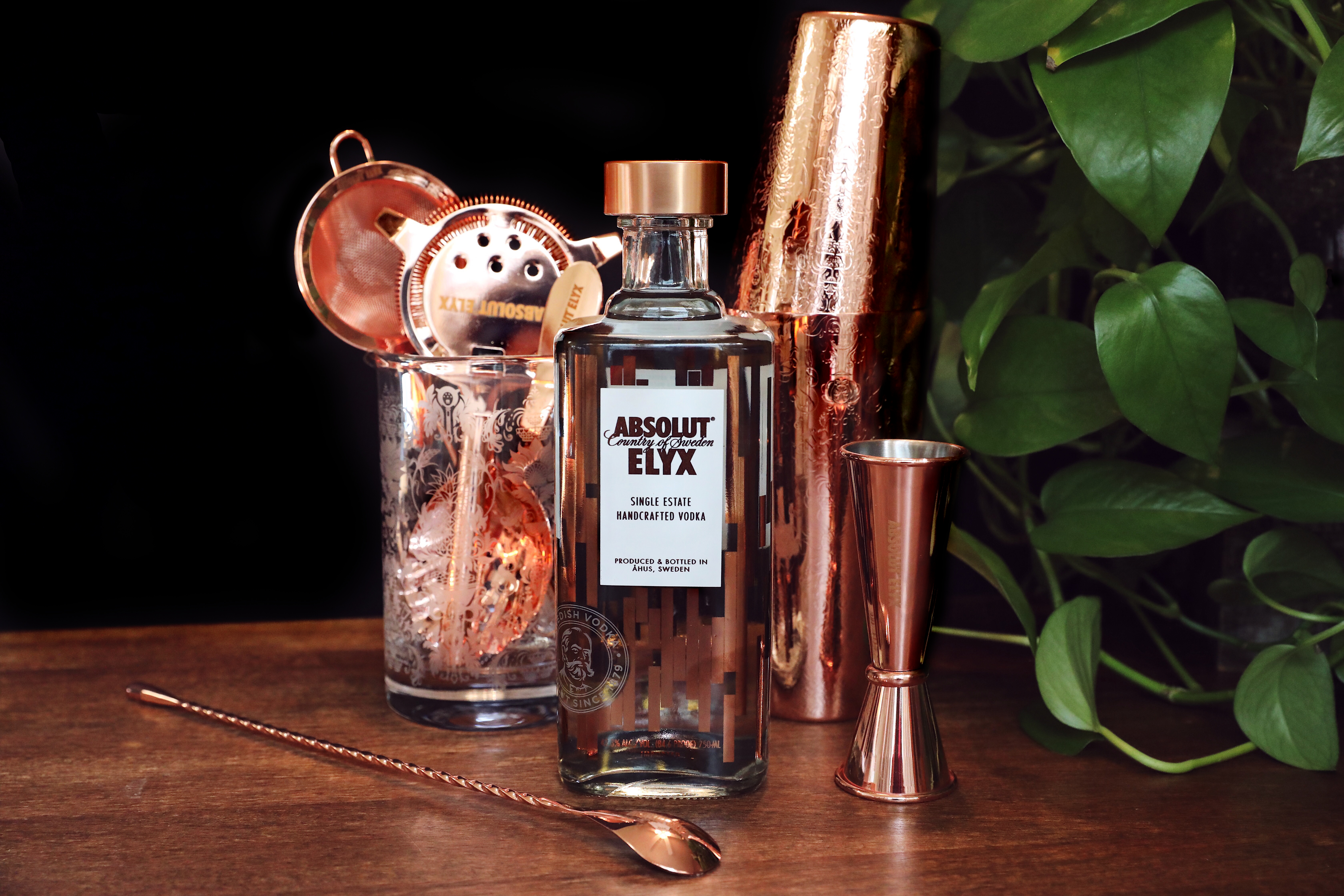 Absolut Elyx Copper Bar Tools