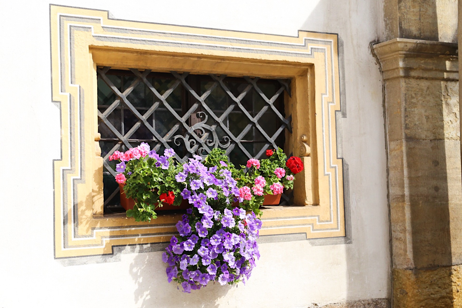 Flower Window in Regensburg