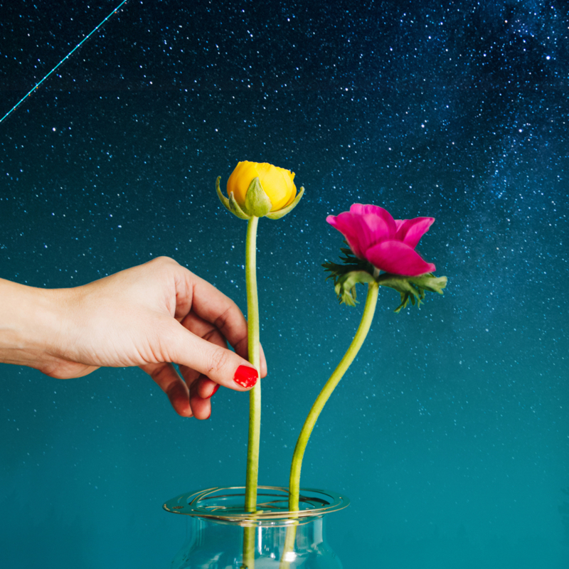 Flower Constellations with Stars